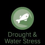 Drought & Water Stress Module