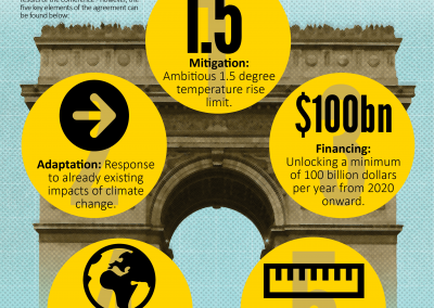 Beyond Paris: 5 Key Outcomes from COP21 [Infographic & Paper]