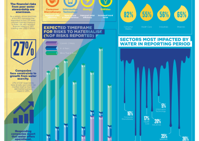 Global Water Availability: Risks and Opportunities