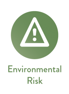Environmental Reporting Risk