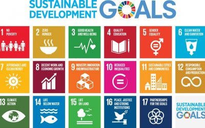The Sustainable Development Goals (SDGs) and what they mean for business