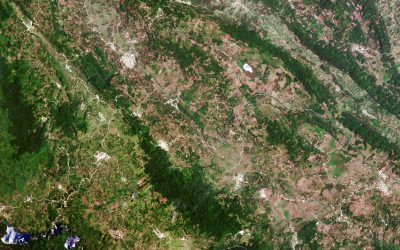 Ecometrica to lead extension to Forests 2020 Project