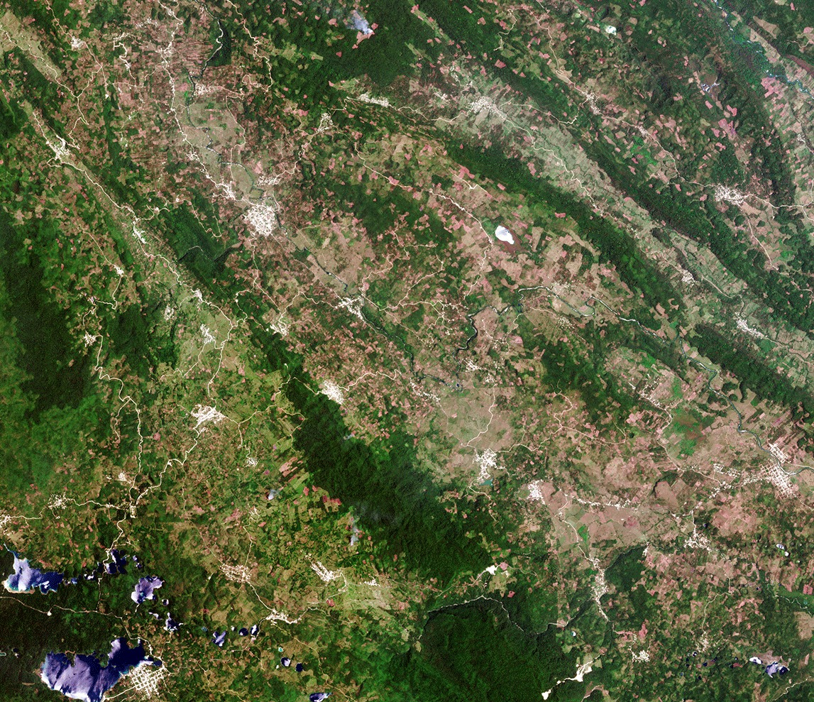 Chiapas forest land cover map - Credit ESA