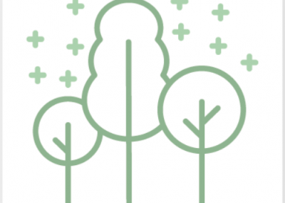 What makes a good carbon offset?